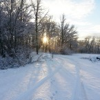 winter-lane